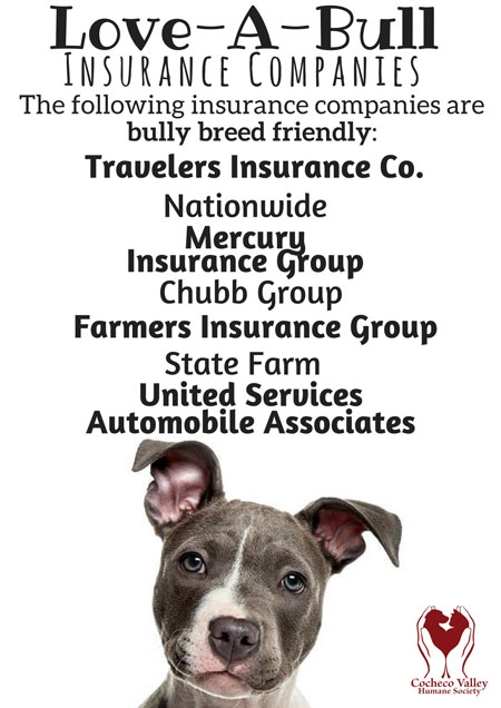 Bully Breed Friendly Insurance
