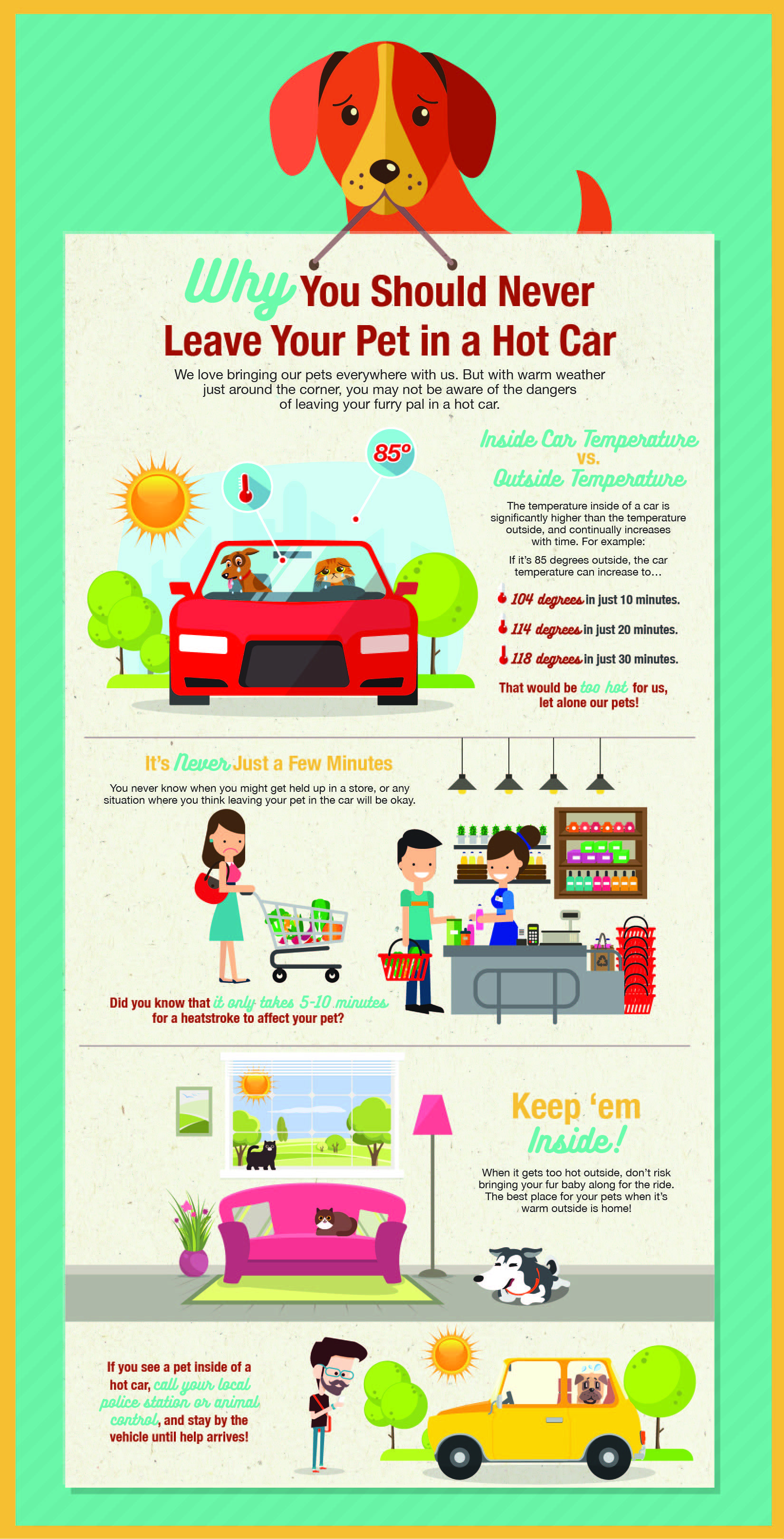 BMW Stratham NH Hot Car Infographic