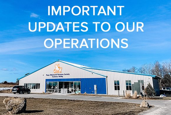 Updated Operations for COVID-19