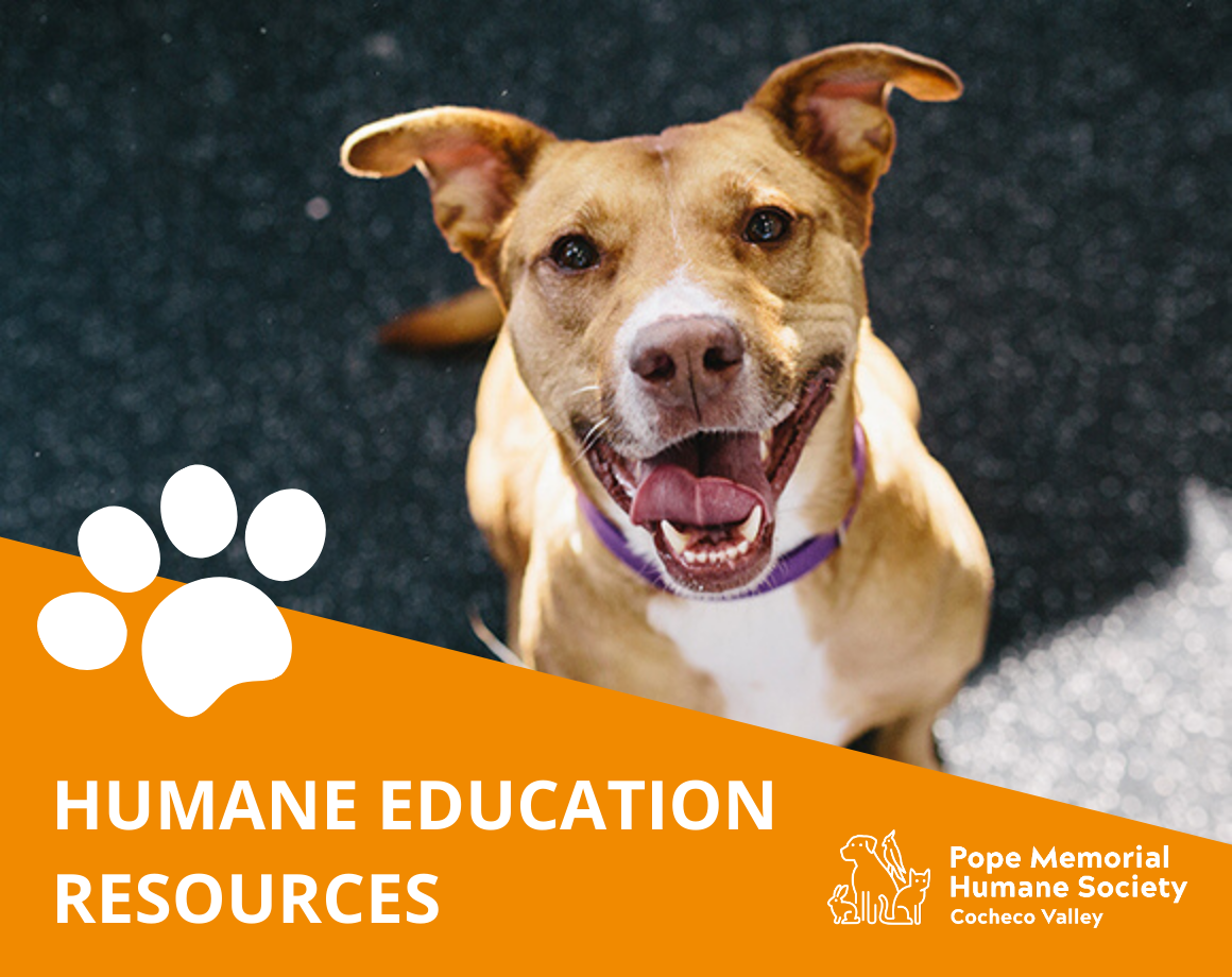 Humane Education Resources for Homeschooling
